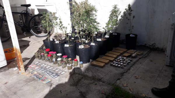 Los cuatro miembros fueron arrestados en Garín por la Gendarmería Nacional; se incautaron plantas, semillas y panes de marihuana de alta calidad.