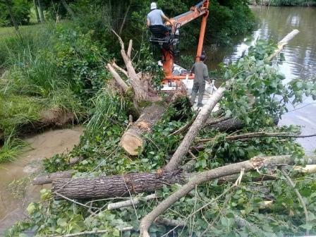 Realizan tareas de destronque y retiro de árboles en peligro de caer en el Delta de Tigre