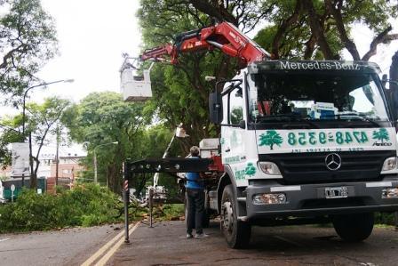 San Isidro realiza un operativo especial de raleo de las Tipas de AV. Del Libertador para evitar accidentes