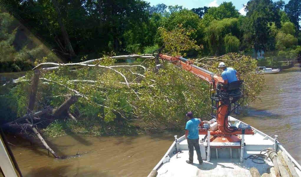 El municipio continúa las tareas de mantenimiento en el Delta de Tigre
