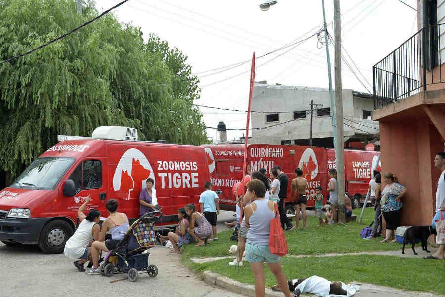Zoonosis Tigre: la tercera semana de julio el móvil recorre diversas localidades de la ciudad