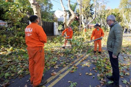 Junto a su equipo de trabajo, el intendente Julio Zamora supervisó las tareas que comenzaron en el centro de la ciudad y en Benavídez. Contempla la intervención de más de 15 mil árboles y se extenderá a lo largo de todo el distrito hasta el mes de agosto.