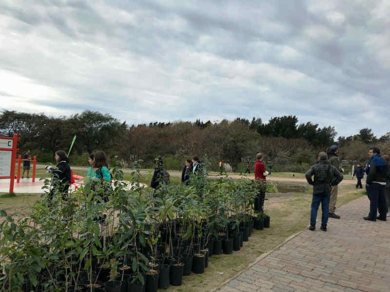 Vicente López planta 500 árboles en el Paseo de la Costa por el Día Nacional del Árbol