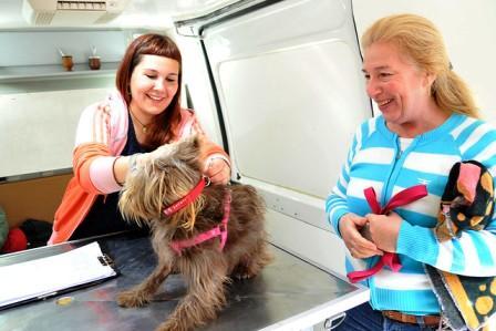 Comenzó a funcionar en Tigre el Registro de Mascotas