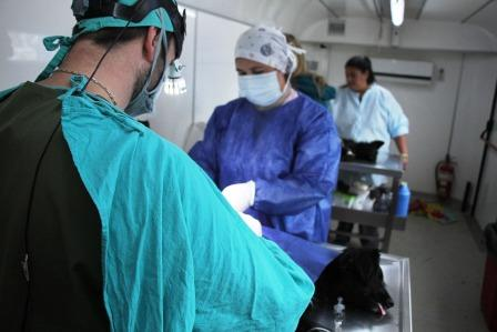 Pilar: Cronograma del Quirófano Veterinario Móvil de septiembre