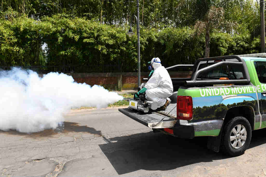 Se registraron 633 casos de dengue y advierten por brote en 27 distritos bonaerenses