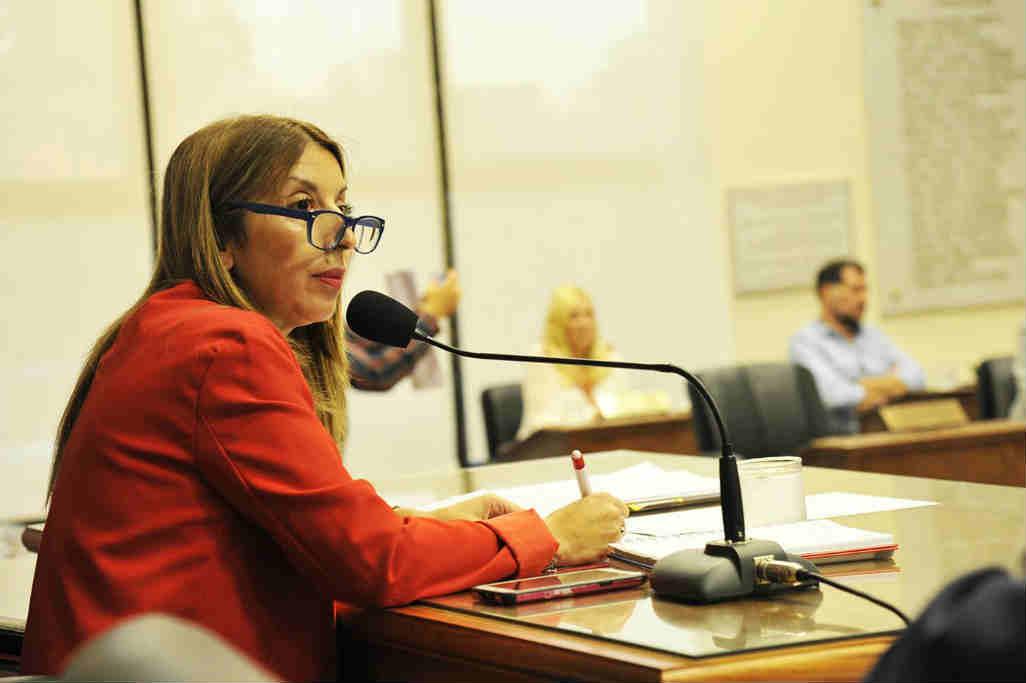 El HCD de Tigre aprobó el presupuesto y la fiscal impositiva 2020 - Alejandra Nardi