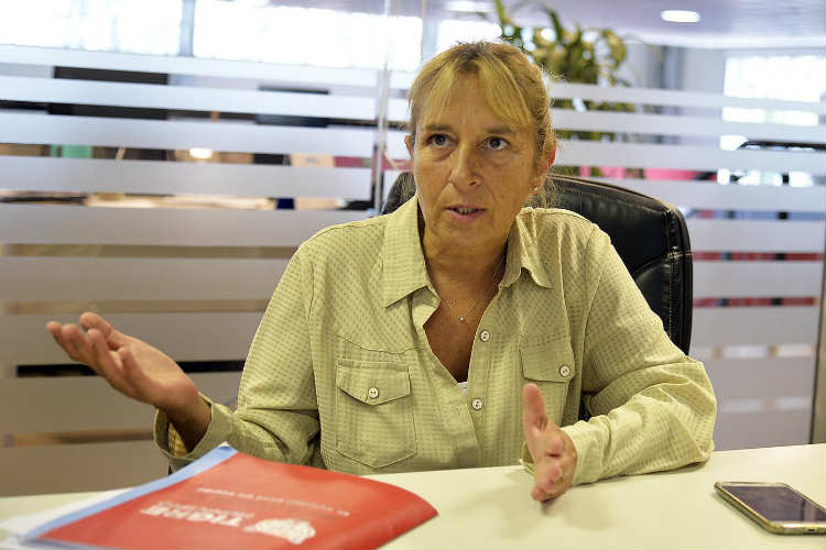 """María José Viani """"Tigre está preparado para prevenir y tratar el Dengue"""""""