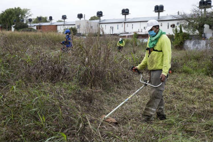 Para prevenir el dengue realizan en Beccar un operativo de limpieza