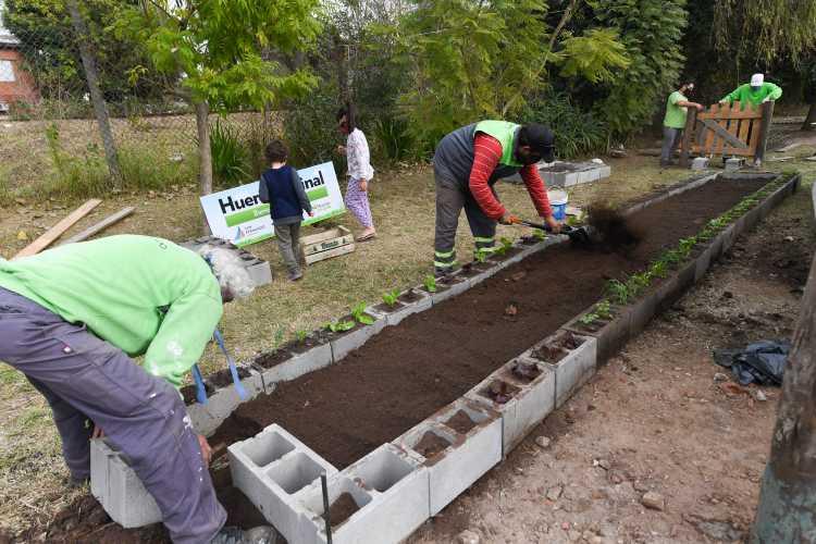 San Fernando colaboró con el primer proyecto de huerta vecinal para el cuidar el medio ambiente