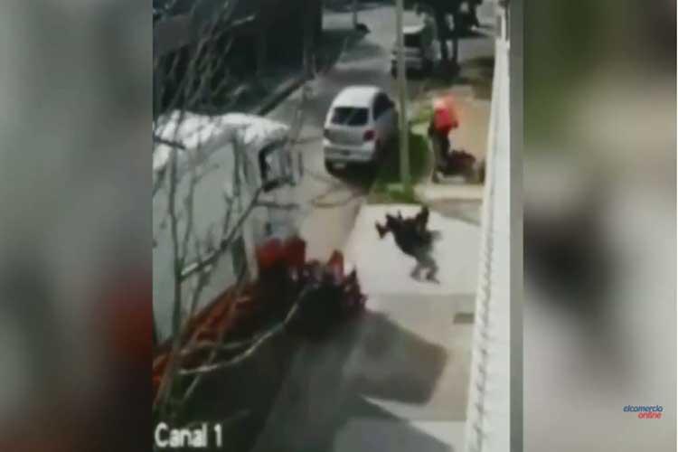 Sodero embiste con su camión a uno de los motochorros que asaltaba a una mujer en la calle