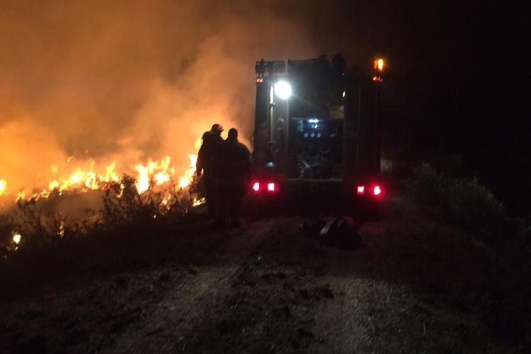 """Cabandié aseguró que apagar un incendio en el Delta le cuesta al Estado """"20 millones por día"""""""