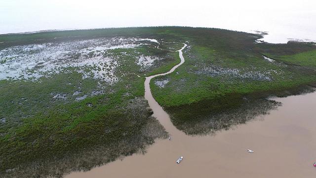 Las nuevas islas de San Isidro fueron declaradas reserva natural