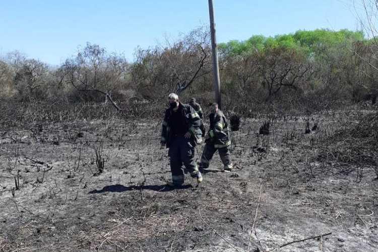 El Municipio y Bomberos extinguieron incendios en el Delta de San Fernando