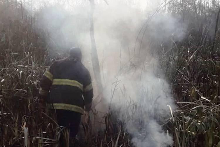 Ambiente y Seguridad crearon comité conjunto para sofocar incendios en islas del Delta del Paraná