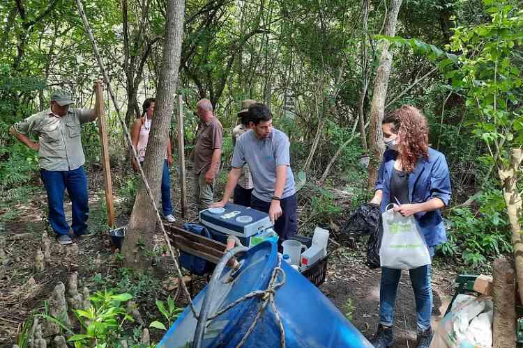 Cianobacterias en el Delta de Tigre: continúan los estudios para investigar el estado de las aguas