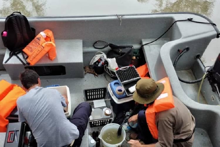 Cianobacterias en el Delta: continúan los monitoreos, campañas de prevención y de tratamiento de agua