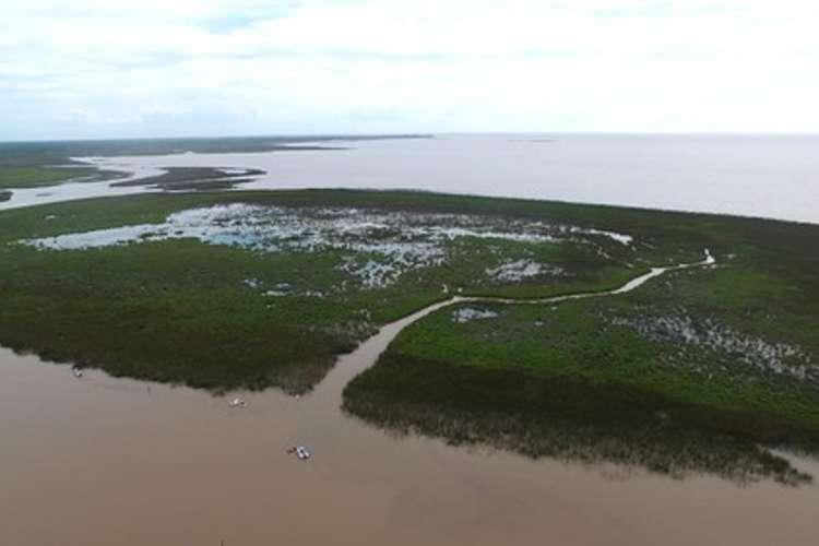 En el día de los humedales, San Isidro ratificó su compromiso con el ambiente.