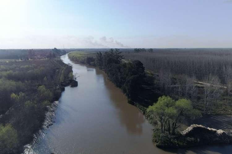 Día Mundial de los Humedales: San Fernando concientiza y trabaja en el cuidado del Delta