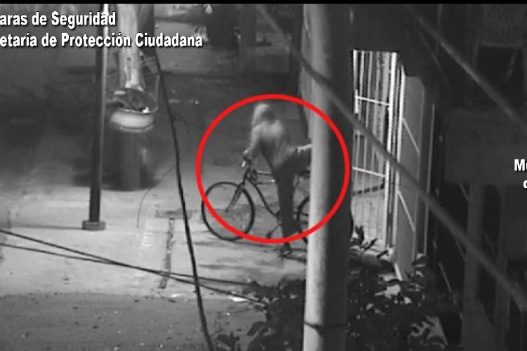 Tigre: Robó una Bicicleta, lo filmaron y fue detenido