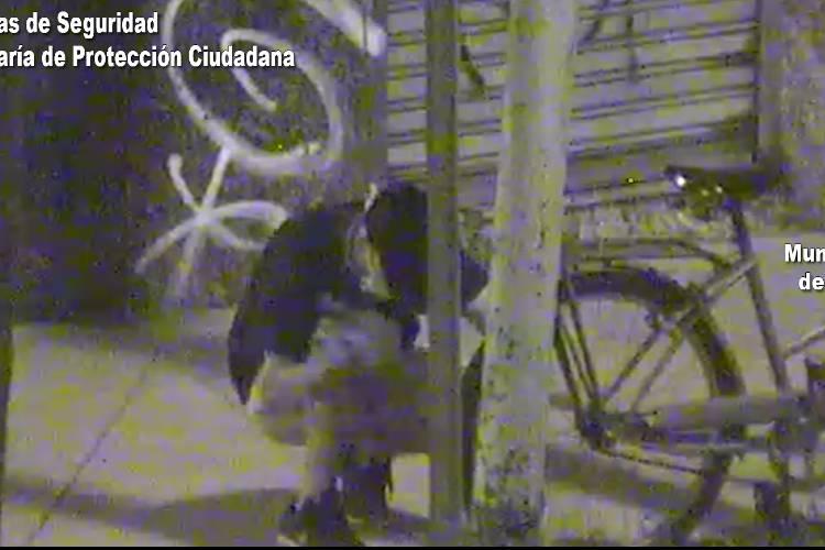 Por las cámaras de Tigre frustran el robo de una bicicleta en El Talar