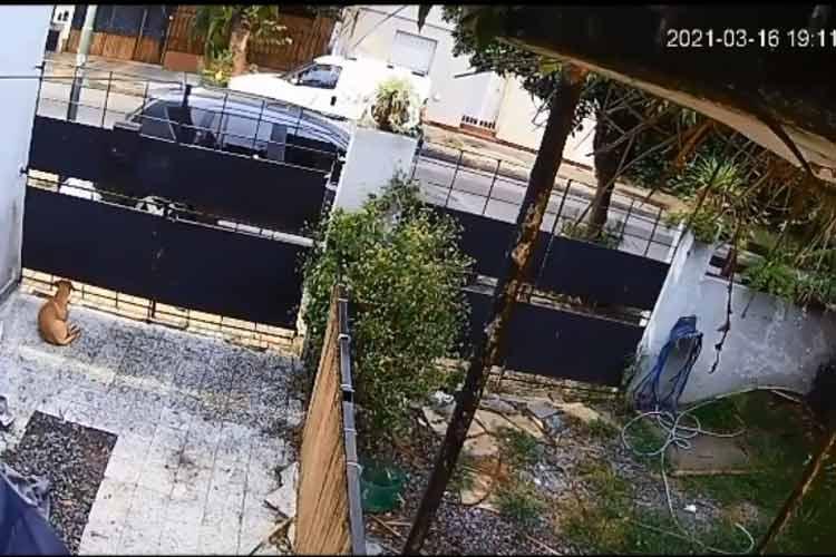 """Presentan una denuncia penal contra el motociclista que haciendo """"willy"""" atropelló a un joven en San Isidro"""