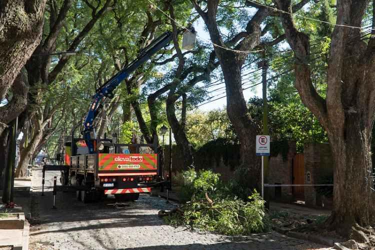 San Isidro avanza con los trabajos correctivos en las tipas de Av. Del libertador
