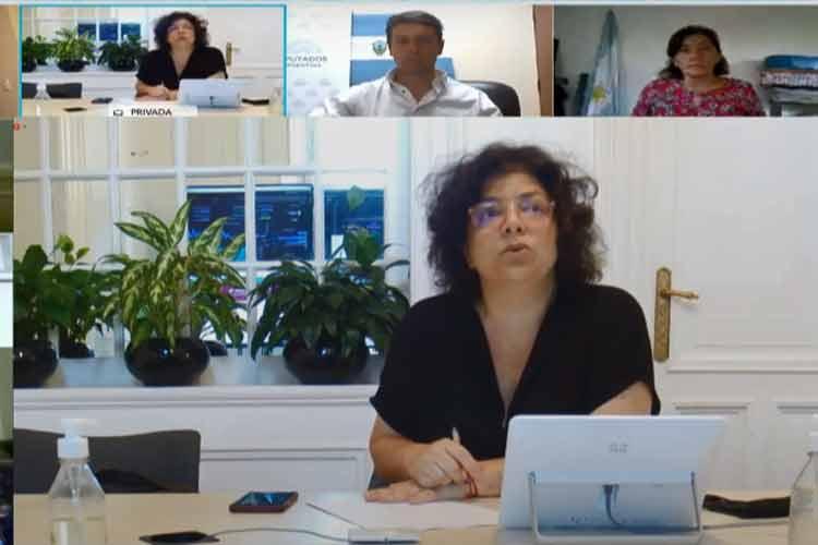 En vivo: Carla Vizzotti expone en Diputados