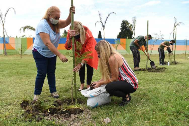 Plantaron 60 árboles nativos en San Fernando