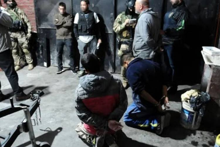 Tras allanamientos en Tigre y San Fernando desbaratan una banda dedicada al robo comercialización de vehículos