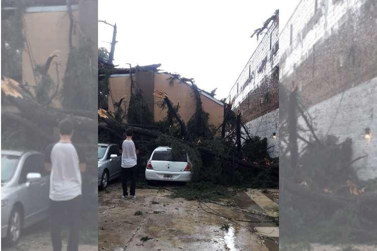 Un Fuerte Temporal causó destrozos en Las Tunas y Benavídez.