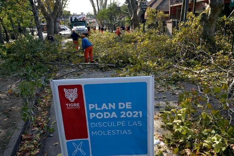 El Municipio puso en marcha el Plan de Poda 2021 en diversas localidades de Tigre