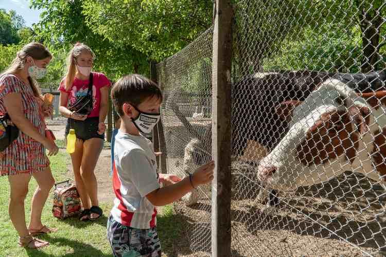 Chacra San Isidro Labrador: nuevo día y horario para visitar los animales de granja