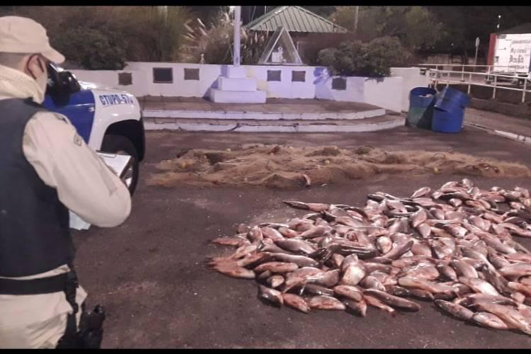 Pesca Ilegal: Prefectura secuestró una embarcación en Olivos