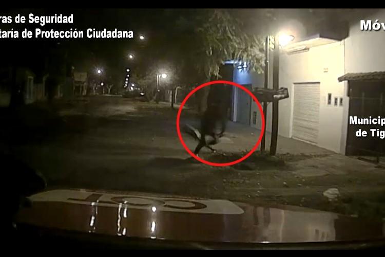 Tigre: robó mercadería de un local de celulares y fue detenido a pocas cuadras
