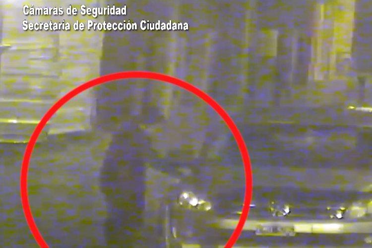 Las cámaras de Tigre la captaron robando pertenencias de un auto y fue detenida