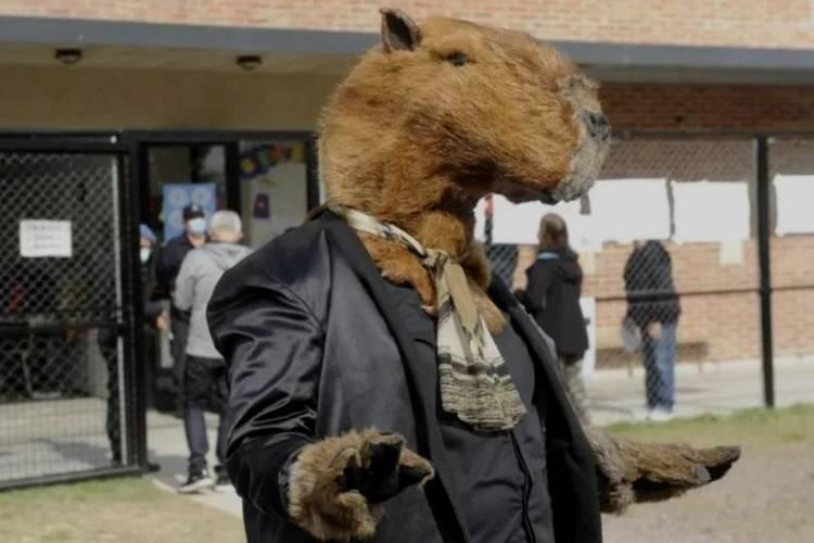 Fue a votar disfrazado de carpincho en un colegio de Tigre